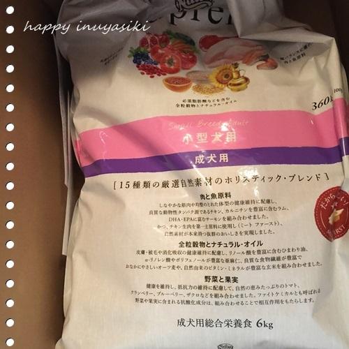mini16IMG_0087-20161108.jpg
