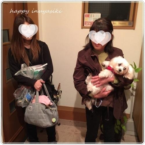 mini16IMG_8139-20161019-2.jpg