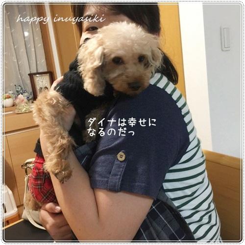 mini16IMG_8144-20161019-2.jpg