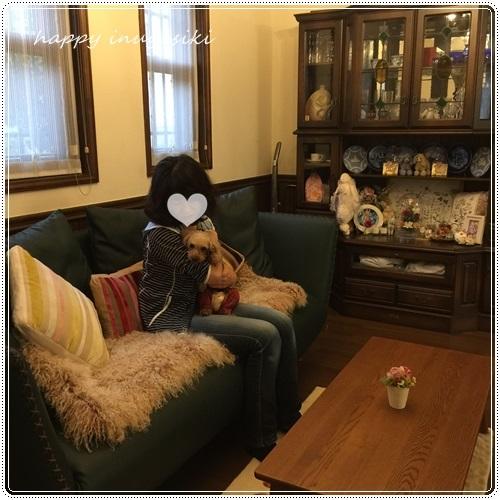 mini16IMG_8189-20161019.jpg