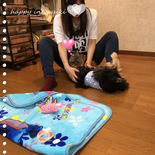 mini16IMG_8358-20161020.jpg