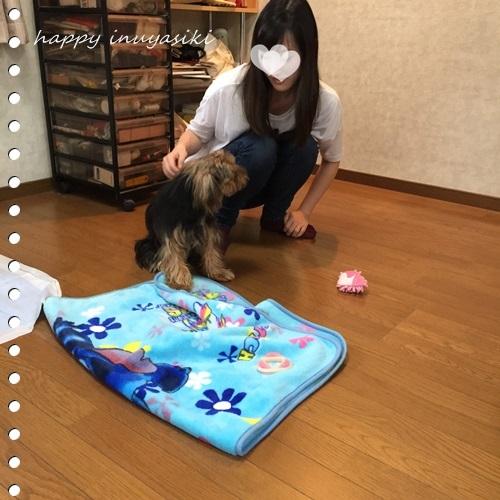 mini16IMG_8362-20161020.jpg