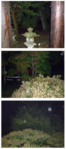 亀麿神社とオーブ