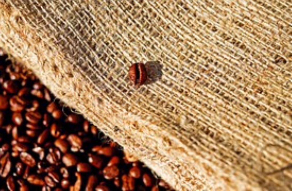 coffee-1576259__180_1024.jpg