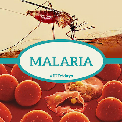 Malaria-400px.png