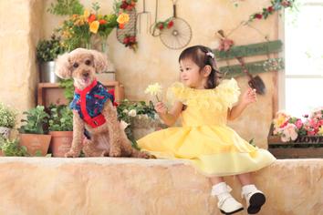 2歳記念バースデーフォト群馬伊勢崎ふうかちゃん衣装ペットと一緒犬