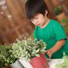 3歳バースデーフォト群馬伊勢崎ゆうき君私服自然光植木