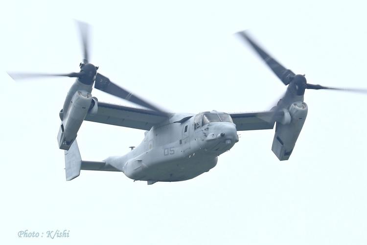 A-2509.jpg