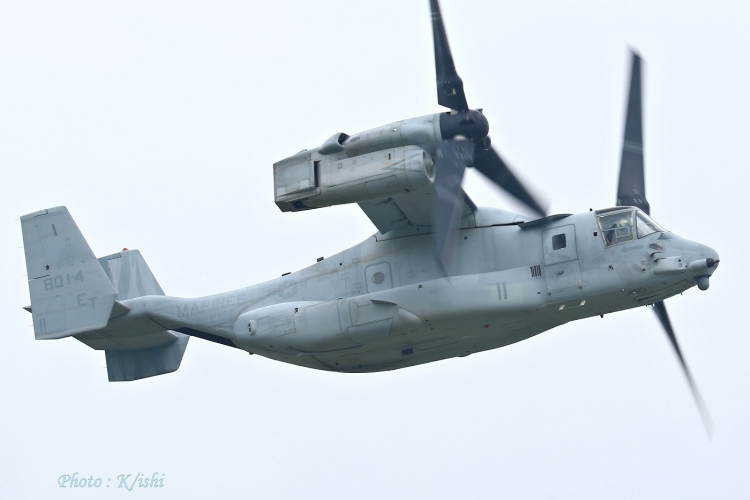 A-2514.jpg