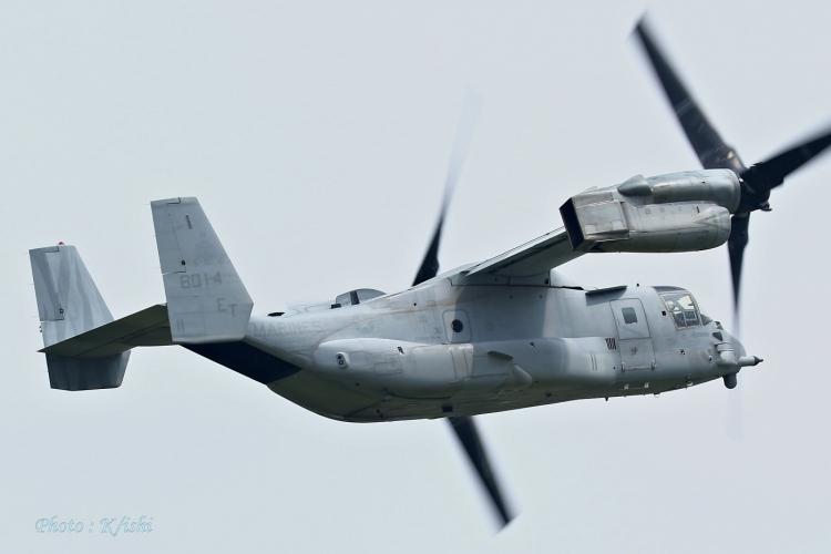 A-2515.jpg