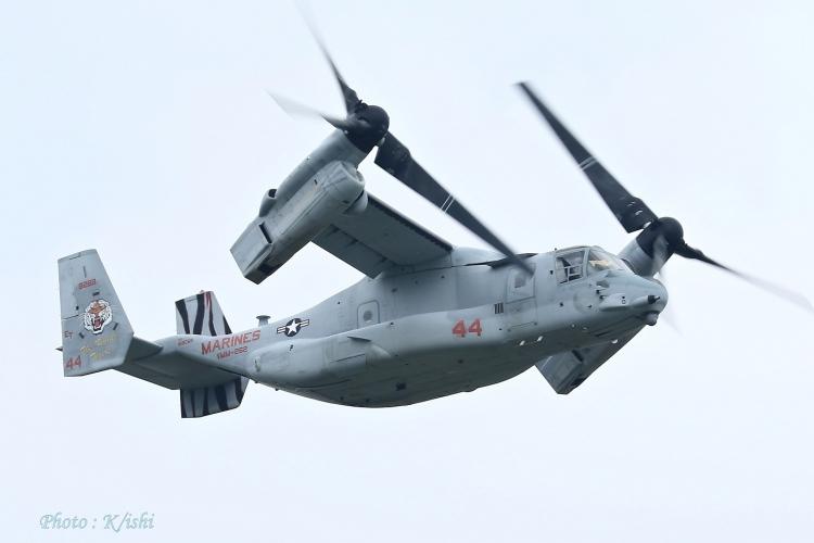 A-2517.jpg