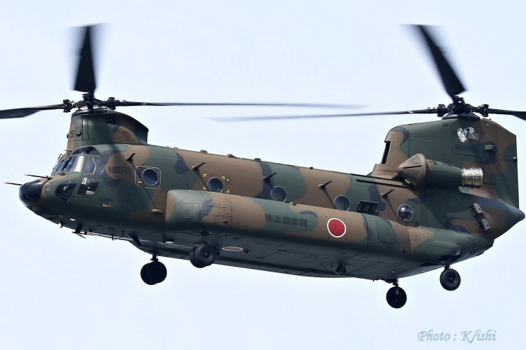 A-2531.jpg