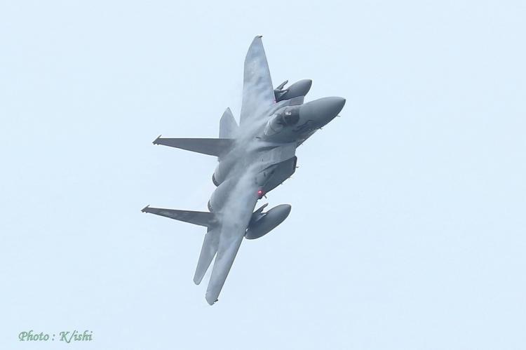A-2799.jpg