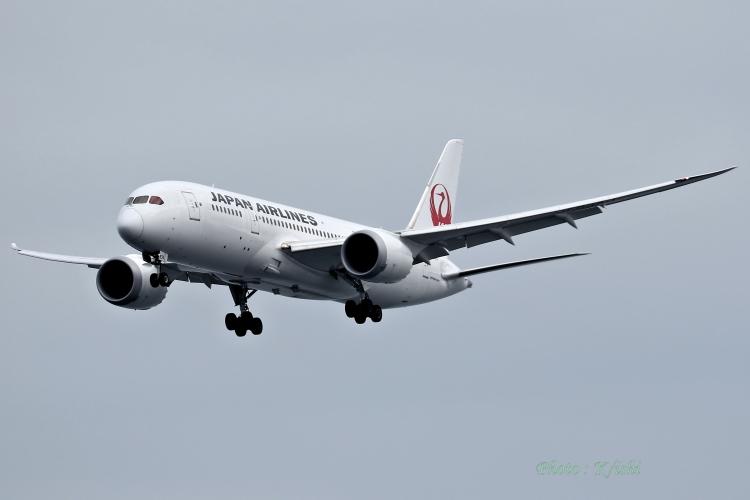 A-9898.jpg