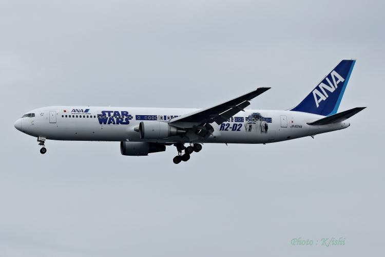 A-9902.jpg