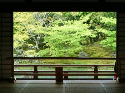 天龍寺一枚の絵のような庭園