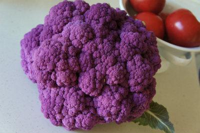 紫かりふらわー