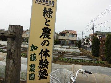 加藤農園2