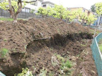 加藤農園6