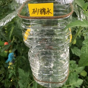 さつま芋植え中断13