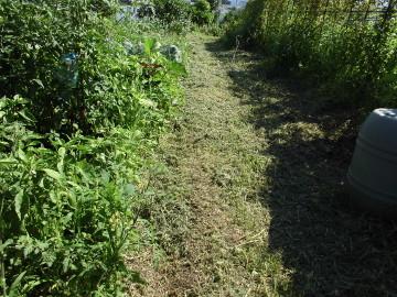 草刈りなど2