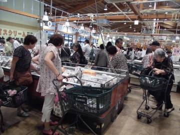 福岡市新青果市場と伊都菜彩8