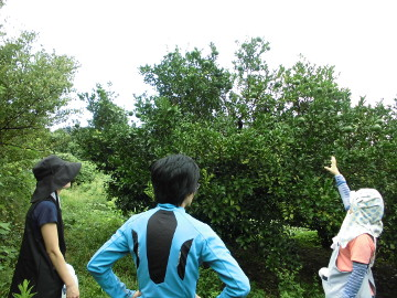 和歌山を後に4