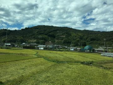 和歌山を後に14