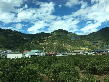 和歌山を後に16