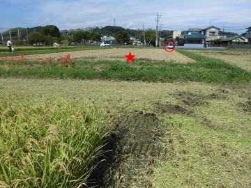 稲刈り終了28年7