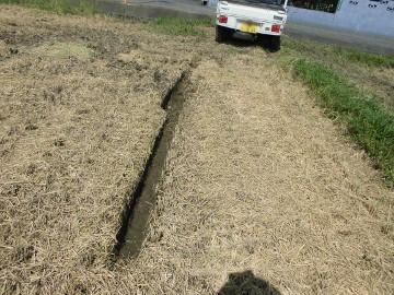 稲刈り終了28年8