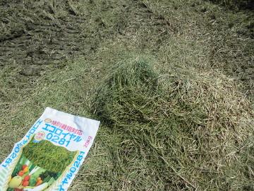 稲刈り終了28年10
