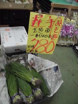 玉ねぎ苗を買いに2