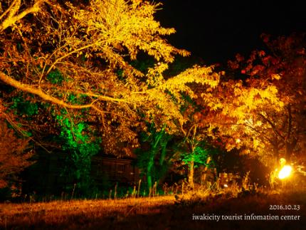 いわきの里鬼ヶ城「紅葉ライトアップ」5
