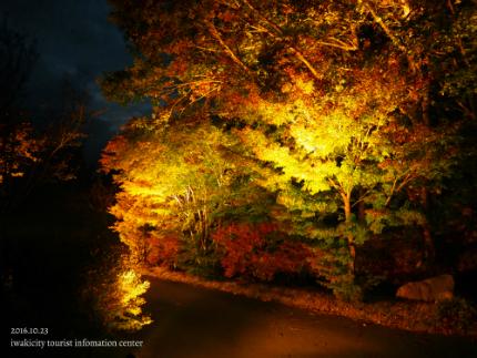 いわきの里鬼ヶ城「紅葉ライトアップ」4