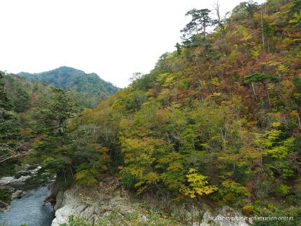 夏井川渓谷-14