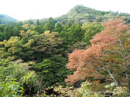 夏井川渓谷22
