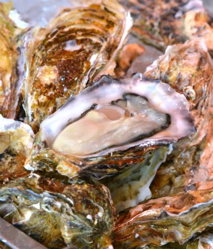 いわき・ら・ら・ミュウ 第3回牡蠣祭3