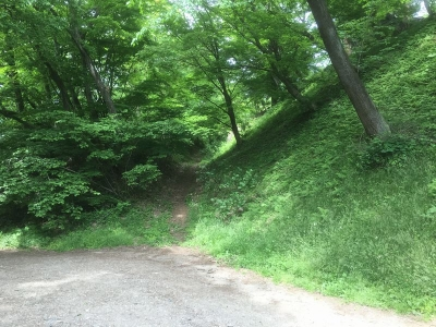 八幡神社の西側にある、おそらく空堀跡らしきもの