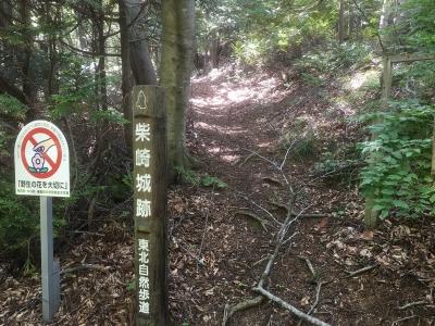 主郭と思われる郭の南にある山頂部への道