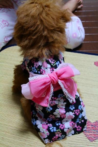 ishou (8)