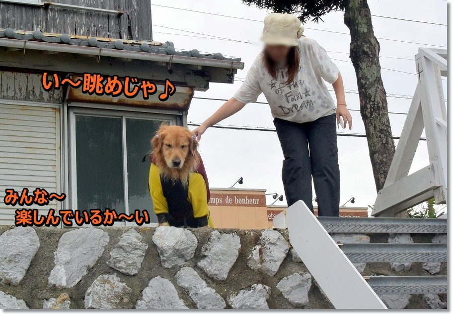 DSC_4068 い~眺めじゃ