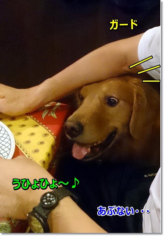 DSC_0060 うひょ~