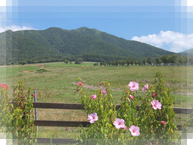 蒜山の旅2