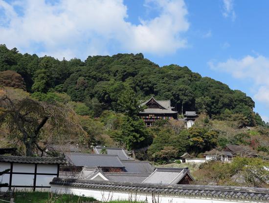 161020長谷寺