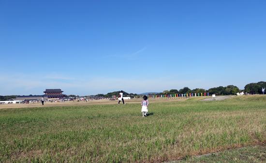 161030草原