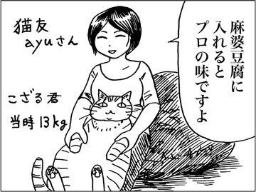 kfc00694-2