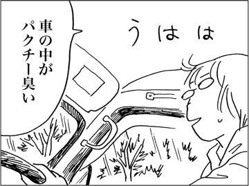 kfc00694-7