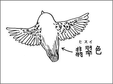 kfc00697-4