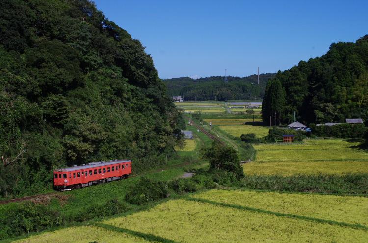 2016年08月26日 小湊 いすみ_020(2)